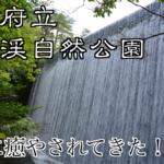 YouTube_サムネイル_京都るり渓へ癒やされに行ってきた